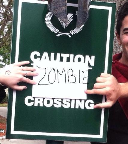 zombiecrossing2
